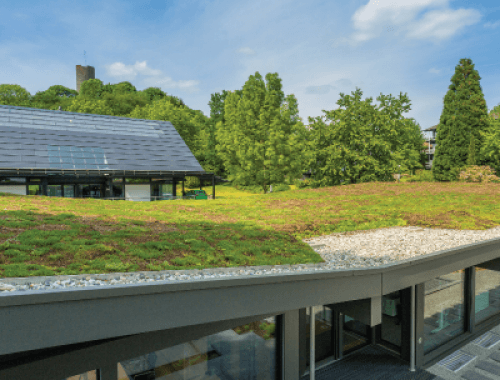 Urbanscape Green roof systems